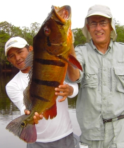 The right gear allows productive monster peacock bass fishing.
