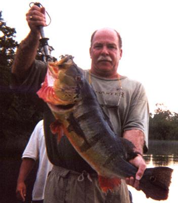 Ron Kiley - Peacock Bass